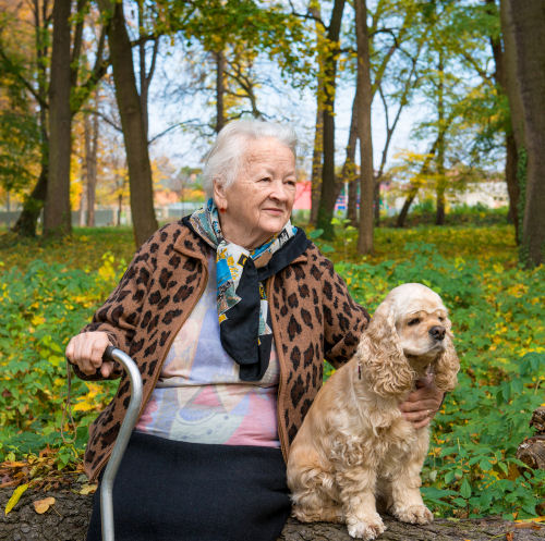 Is pet ownership a good idea for seniors?